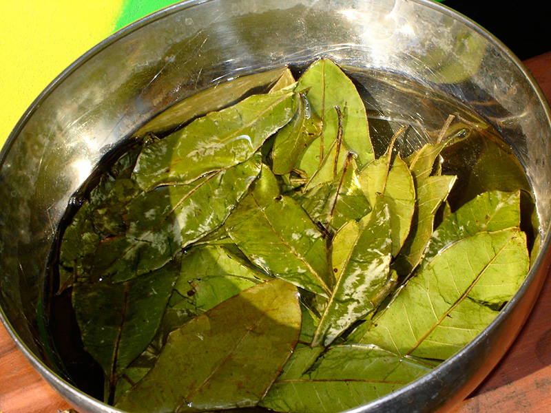 4) Soak leaves in water for 20 minutes