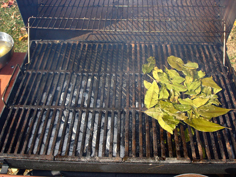 9) Make a bed of leaves on the cool side of the grill